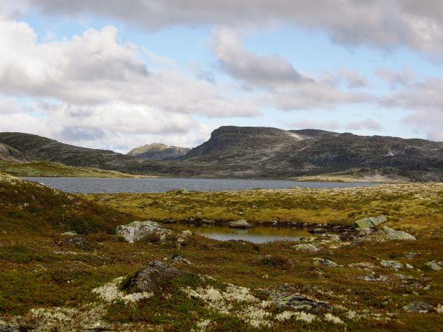 Norwegen © D.S. Felix 2014