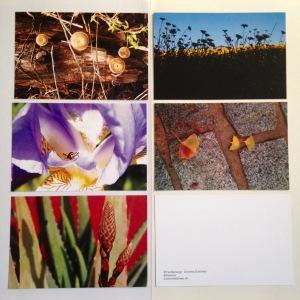 Blickwinkel - Foto-Post-Karten von D. Schönfeld